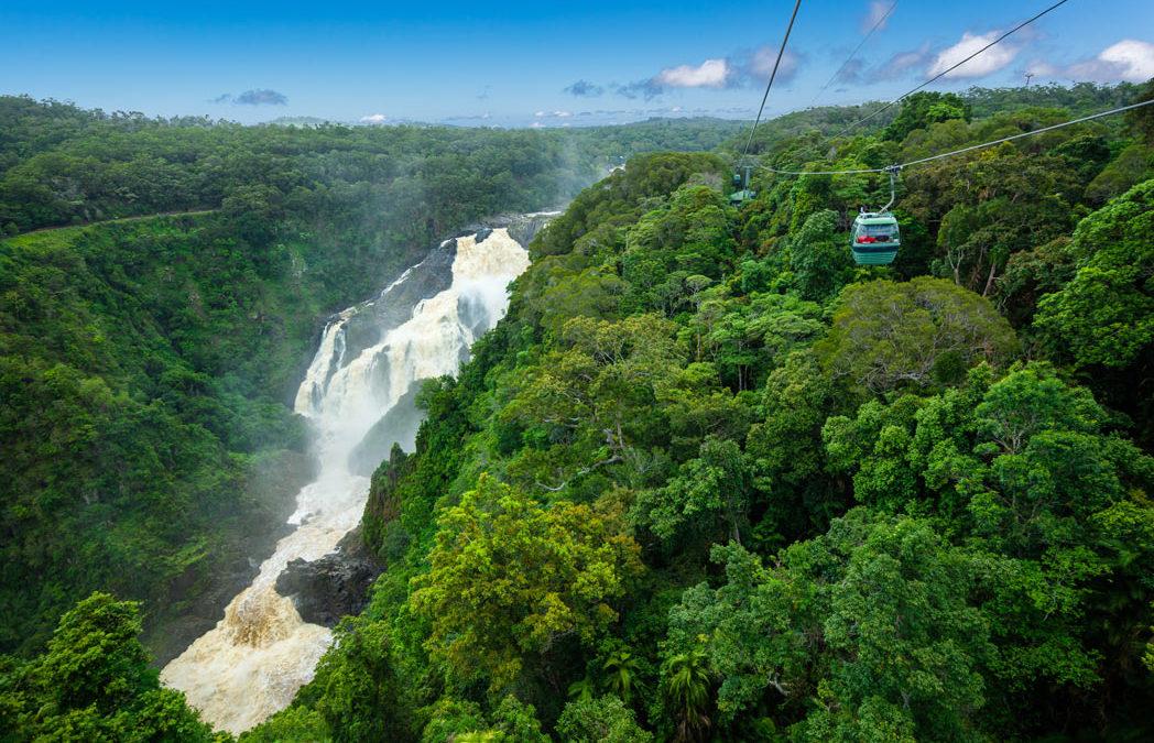 8 Reasons to Visit Port Douglas in the Green Season