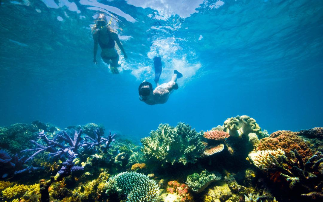 Guide to visiting the Great Barrier Reef