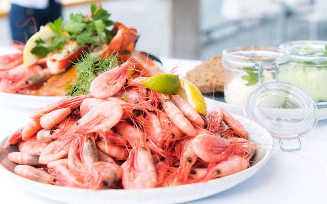 Seafood Lovers Guide to Port Douglas